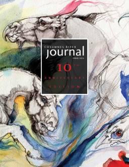 Cosumnes River Journal 2016